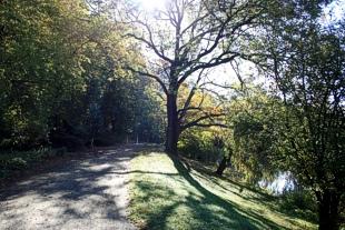 Die Umgebung von Spremberg